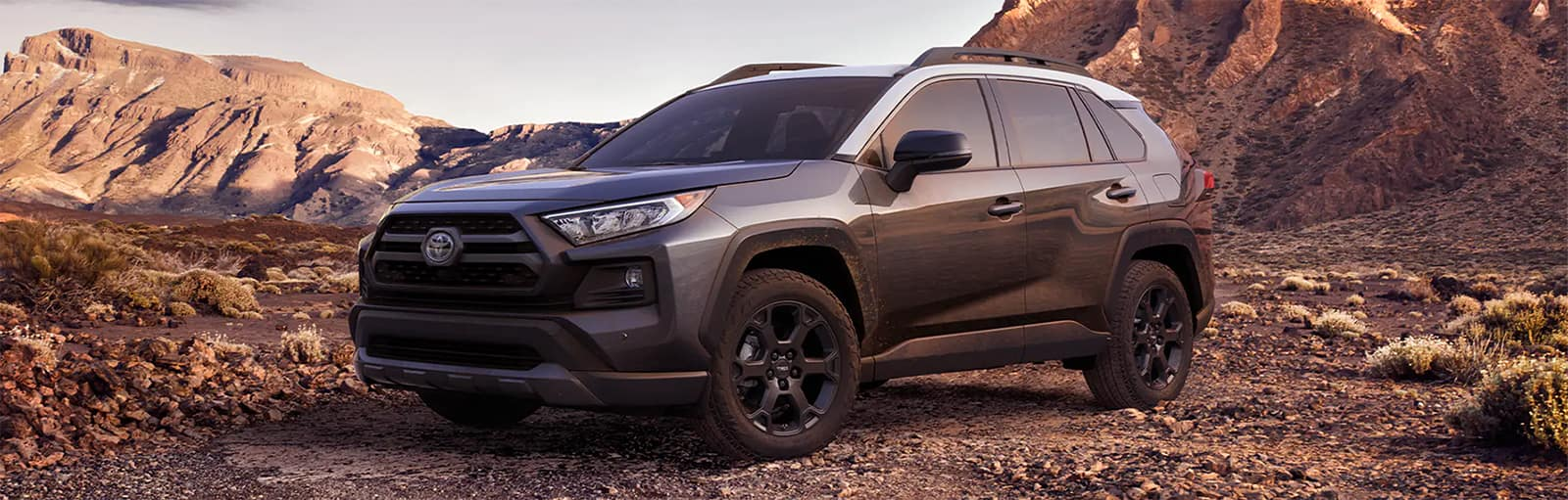 2020 RAV4 Arriving Soon