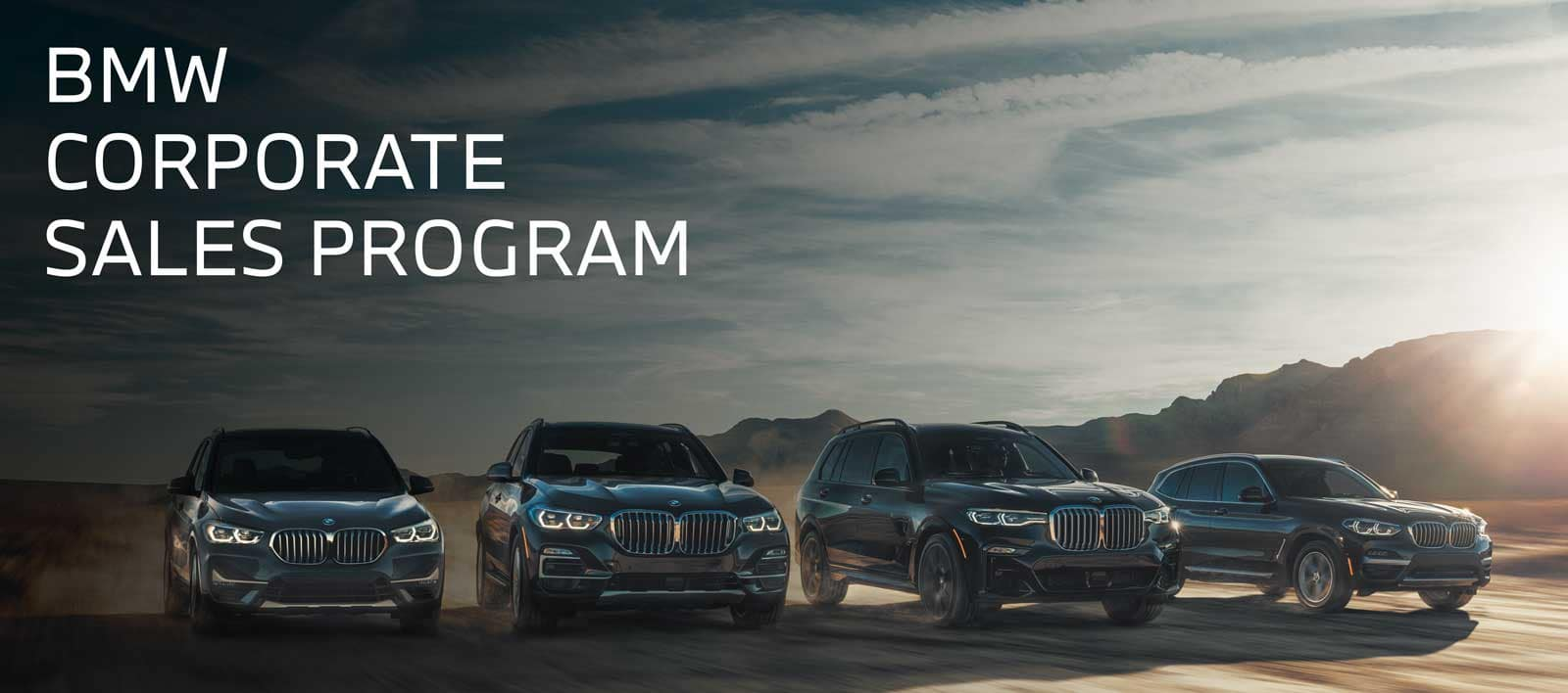 BMW corporate sales program