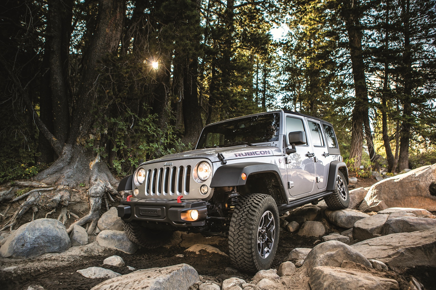 Jeep Wrangler Off-Roading on Trail
