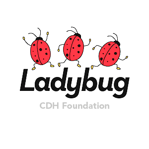 Ladybug CDH Foundation