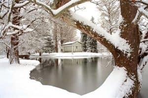 Snowy Winter Pond