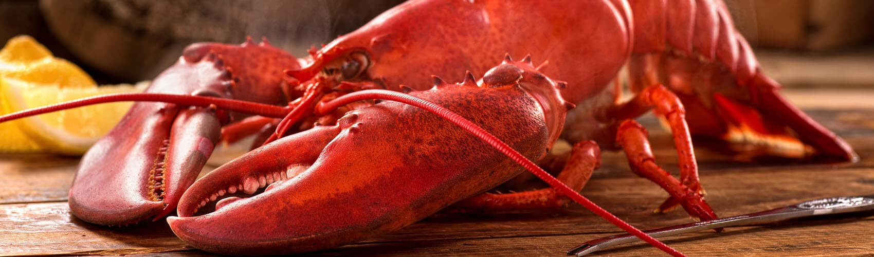 National Lobster Day near Port Charlotte FL