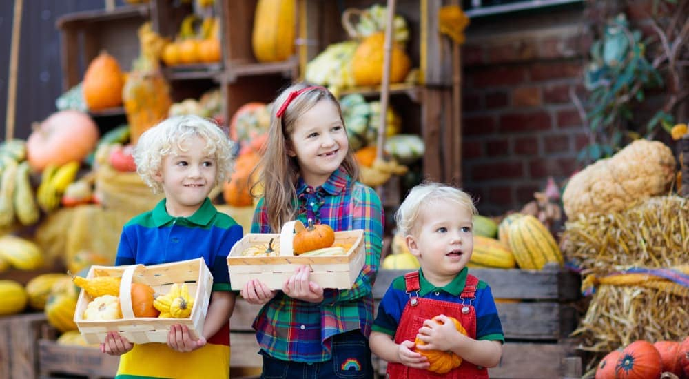 Three little kids are holding pumpkins while enjoying fall festivals near a Chevy Dealer, in Bethlehem, PA.