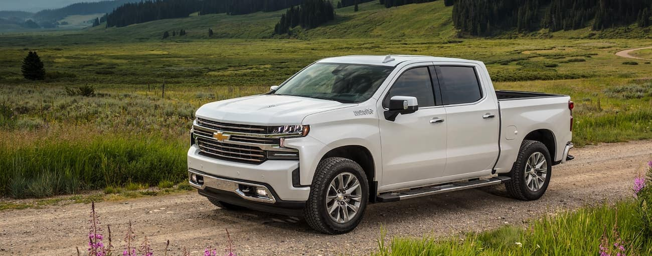 A white 2021 Chevy Silverado 1500 is on a dirt road in front of a field.