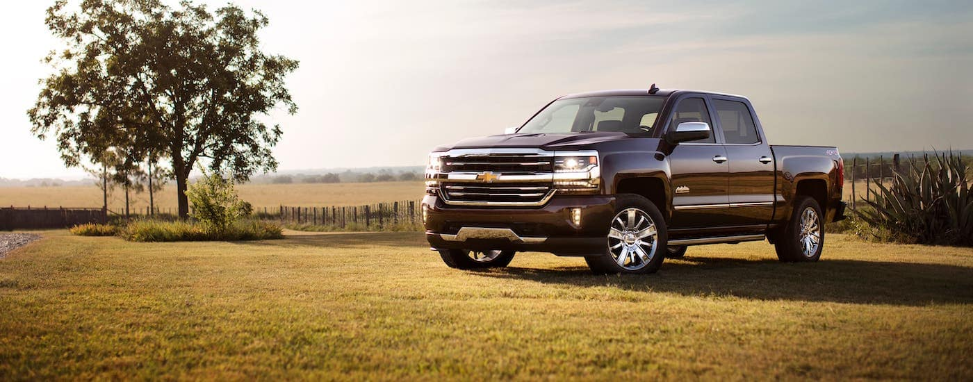 A black 2017 Chevy Silverado High Country is parked in a field next to a tree.
