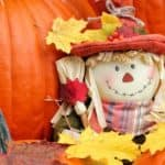 A scare crow doll is with a couple of pumpkins.