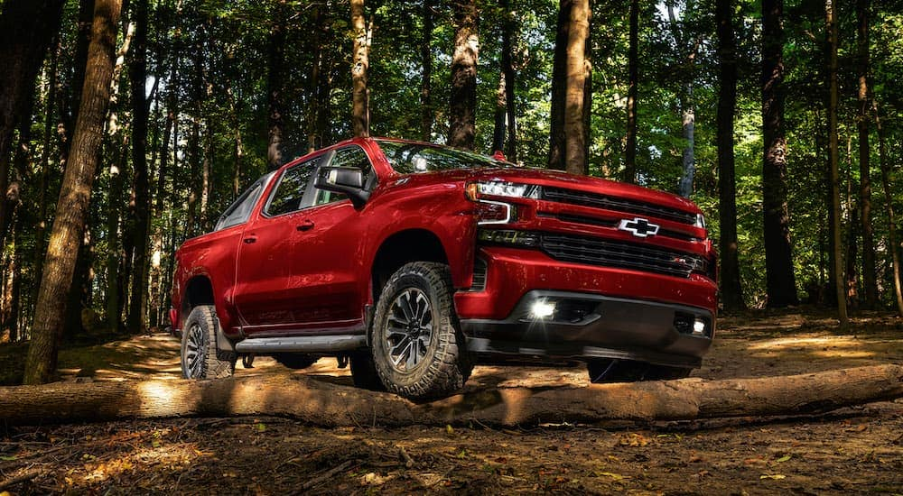 A red 2018 used Chevy Silverado RST is parked in the woods.