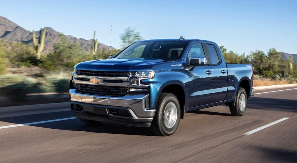 A blue 2019 Used Chevy Silverado is driving past desert shrubs.