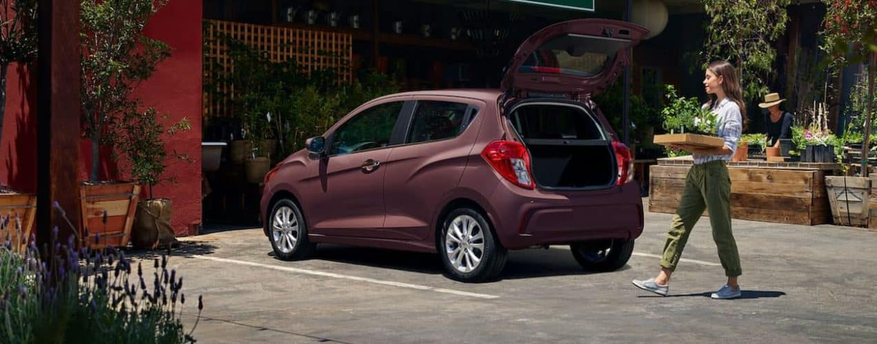 A woman is putting plants into the open trunk of a 2021 Chevy Spark.