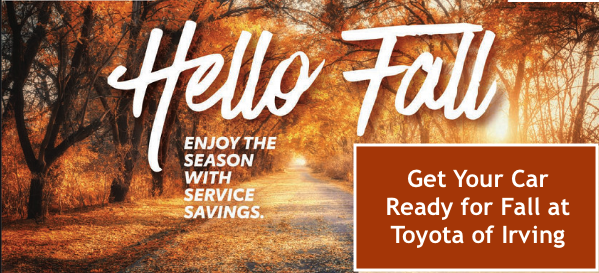 Fall in Savings Service Specials