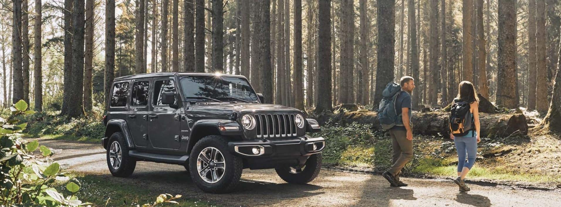 Jeep Wrangler in Forest